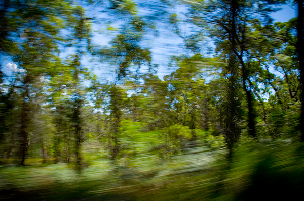 Australia from the Car